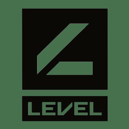 level-logo